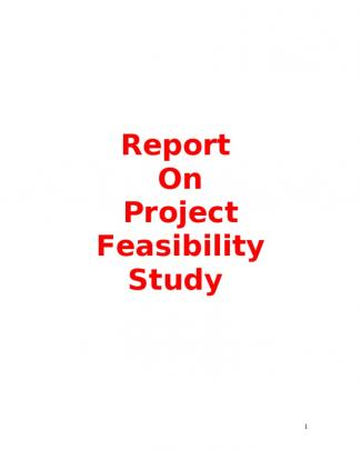 Project On Consultency Firm